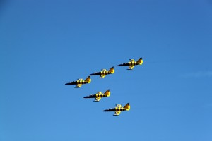 Baltic Bees - formation