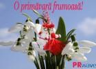 felicitarie 1 martie